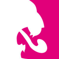 Sterc Online Agency Logo | MODX Professional
