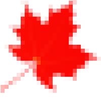 Maple Logo | MODX Professional